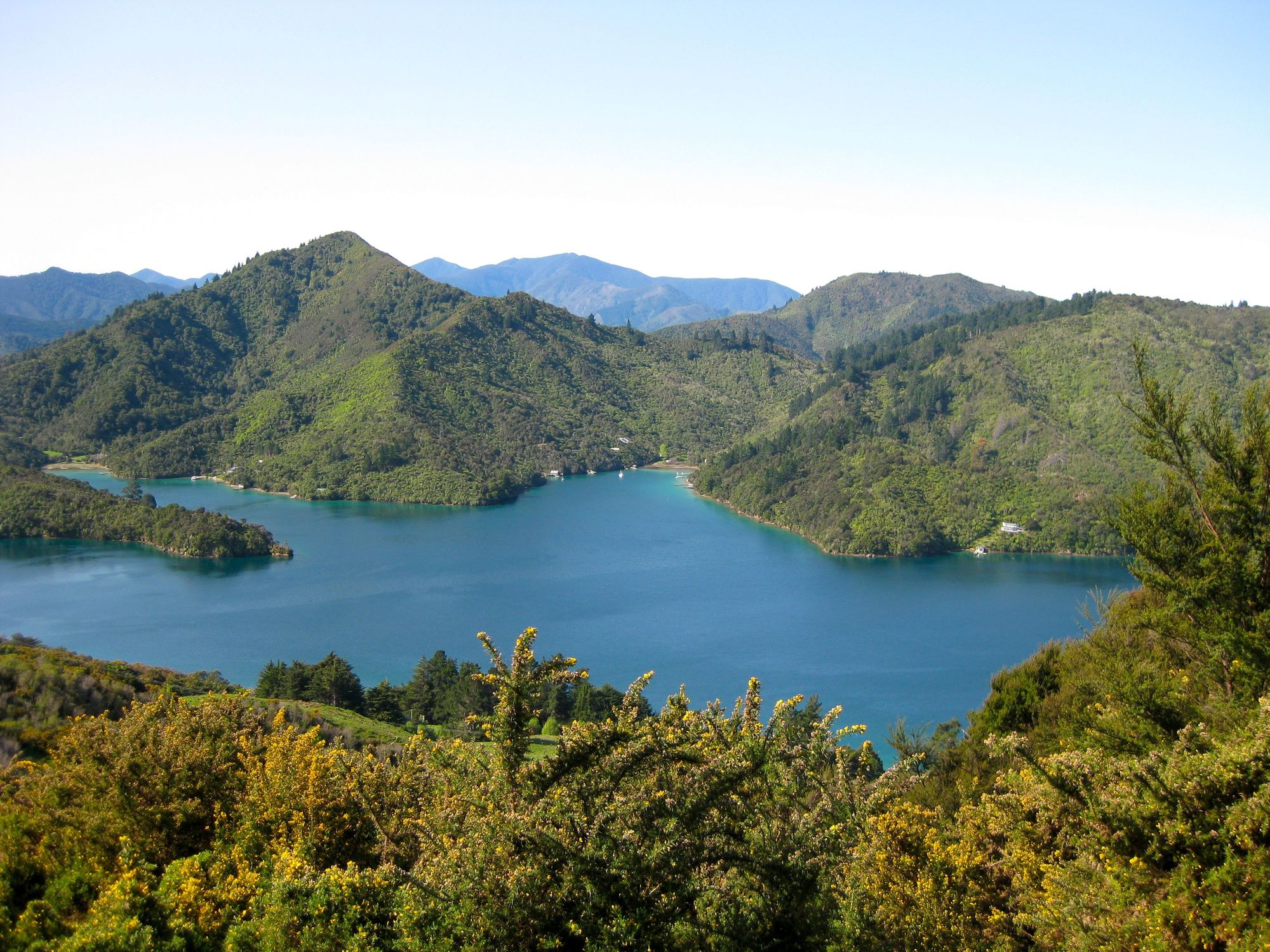 Hiking the Queen Charlotte Track in New Zealand