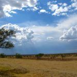 Photo of the Day: Big Skies of Texas