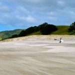 Photo of the Day: Pakiri Beach