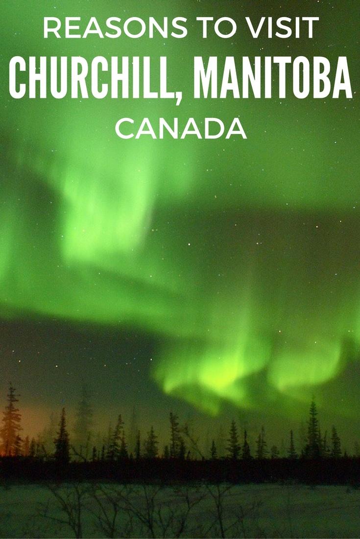 Reasons to visit Churchill, Manitoba