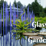 Glass in the Gardens: Chihuly Art in Denver