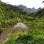 Tahiti, or Jurassic Park?