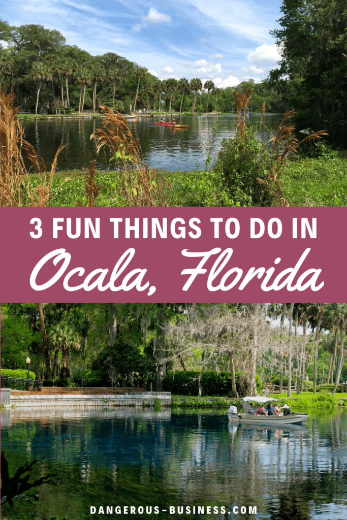 Things to do in Ocala, Florida
