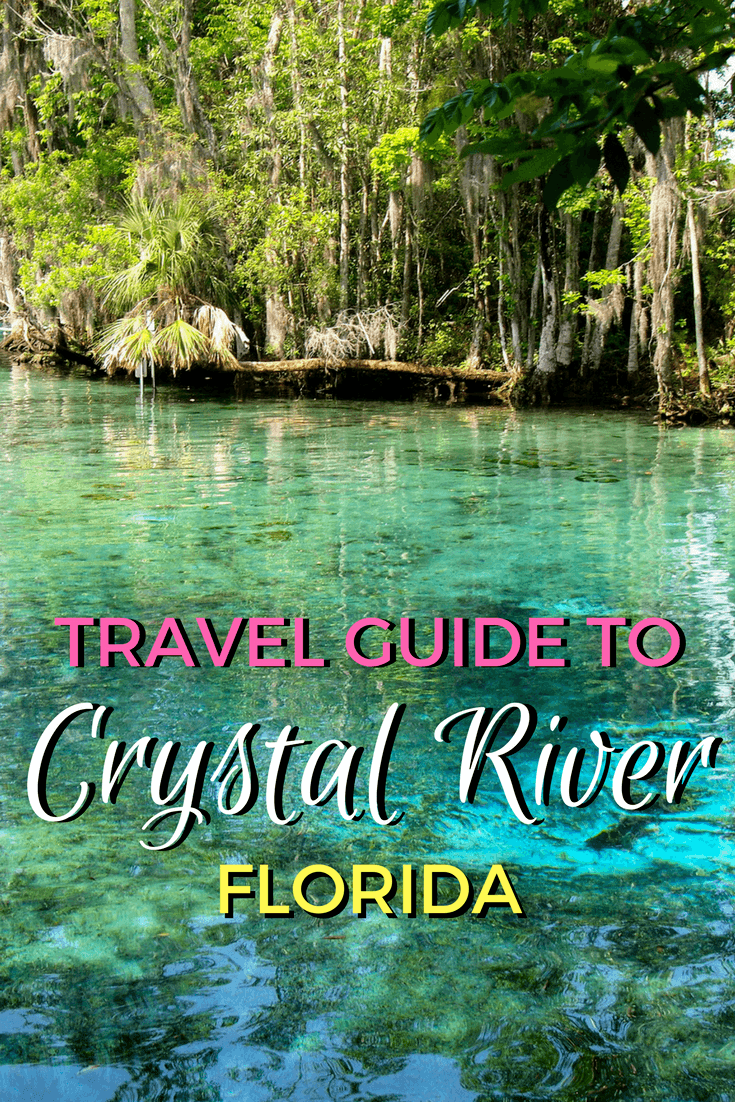 Three Sisters Springs Florida Map.Travel Guide 5 Unique Things To Do In Crystal River Florida