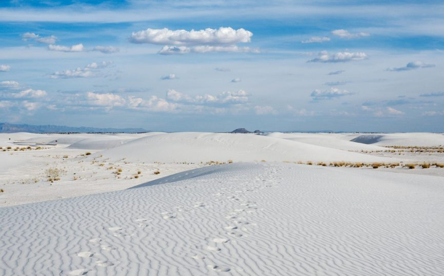 Everything You Need to Know About Visiting White Sands National Park