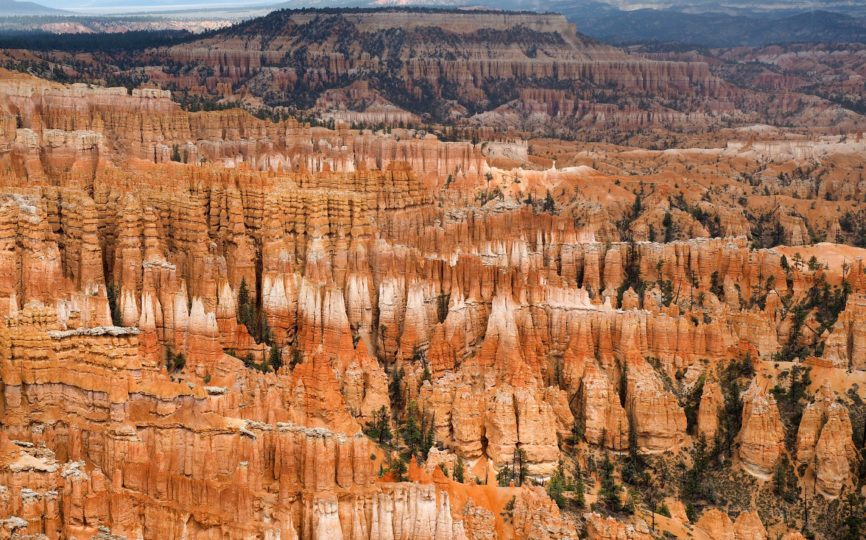 A Foggy, Soggy Day at Bryce Canyon National Park