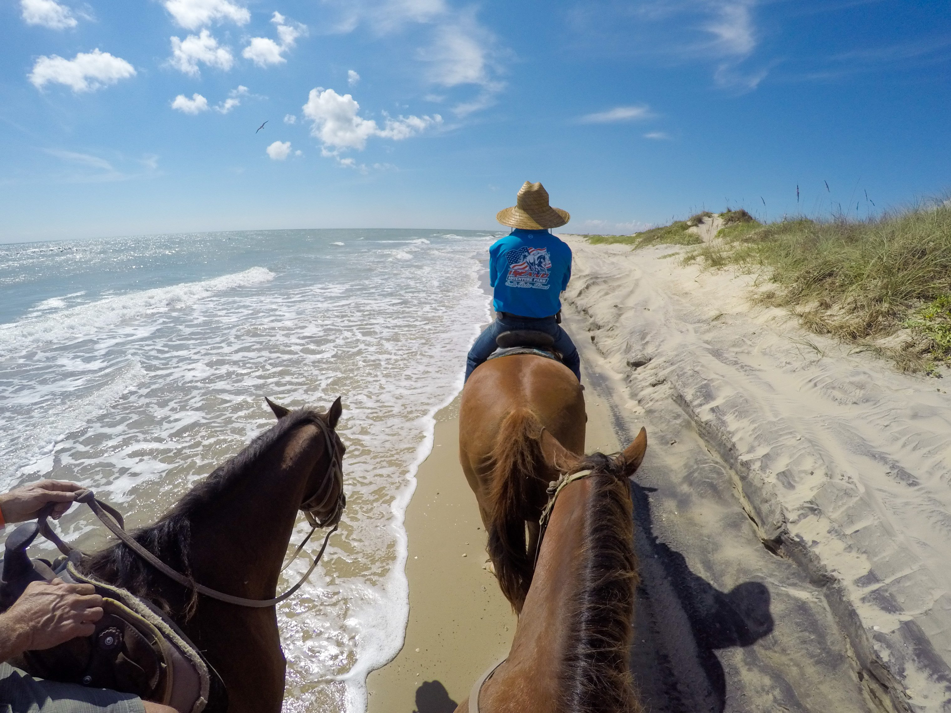 Things to do on South Padre Island