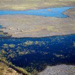 The Okavango Delta Three Ways