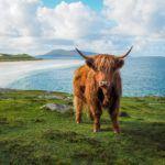 The Isle of Lewis and Harris: Scotland's Best-Kept Secret?