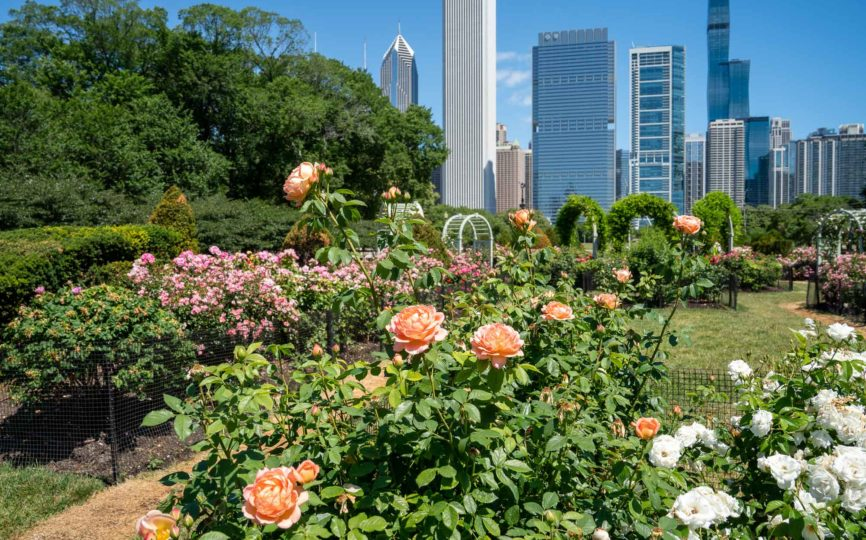 7 Things to Do on A Couples Weekend Getaway to Chicago