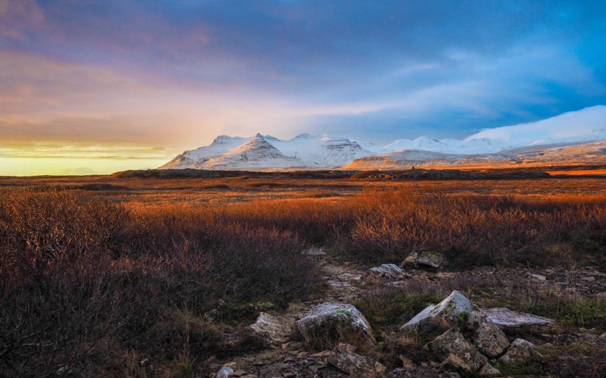 12 Crazy But Cool Things You Can See in Iceland
