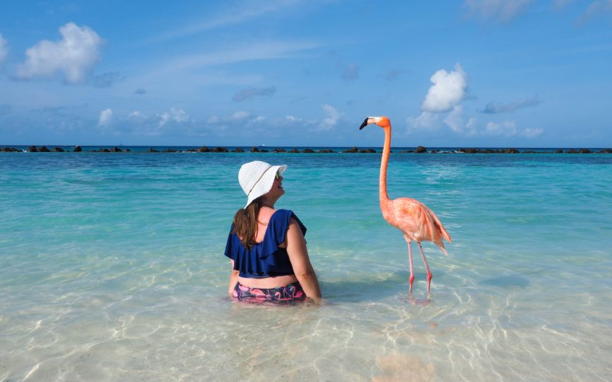 Flamingos, Beaches, and Private Cabanas: Staying at the Renaissance Resort in Aruba