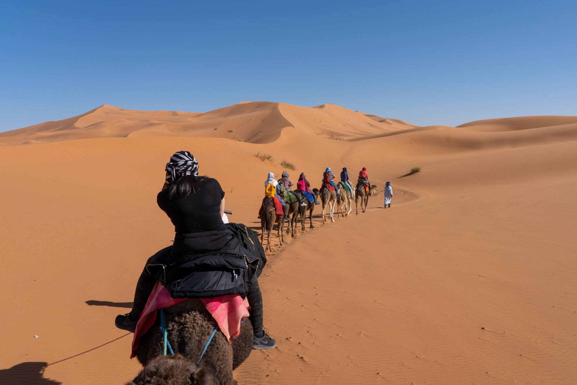 Riding camels into the Sahara Desert in Morocco