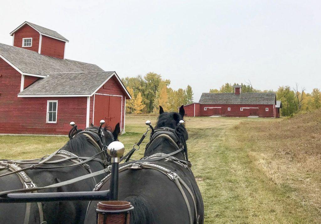Wagon ride at Bar U Ranch National Historic Site