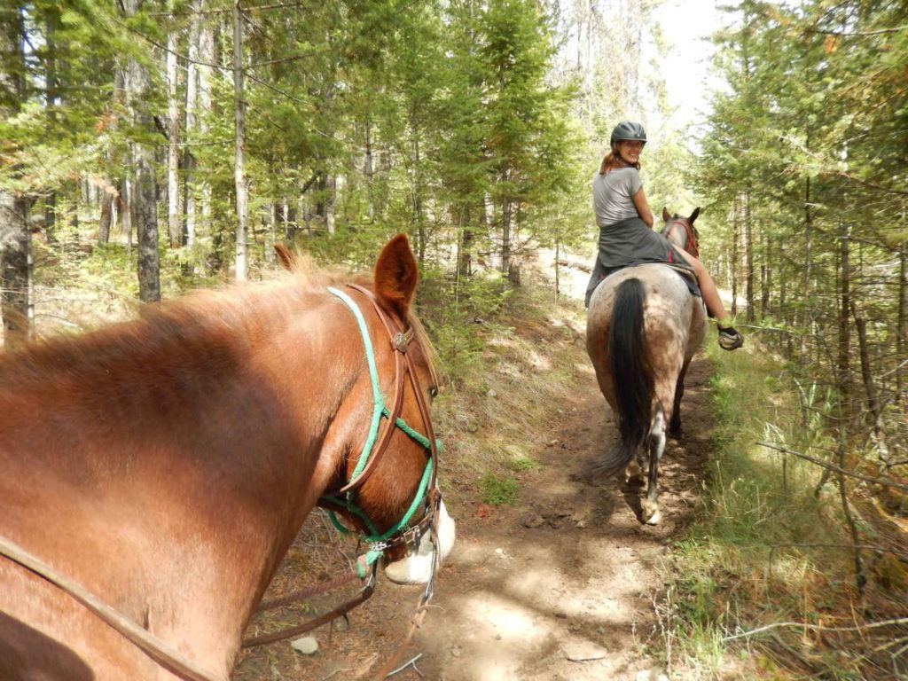 Horse riding in Jasper National Park