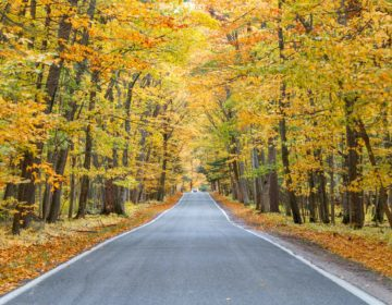 The Perfect 10-Day Michigan Road Trip Itinerary in Fall